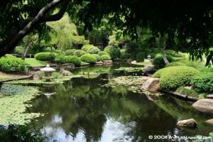 Botanical Garden Mt Coot-tha